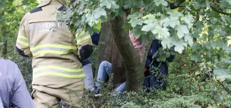 Jongen met been vast in boom Barneveld