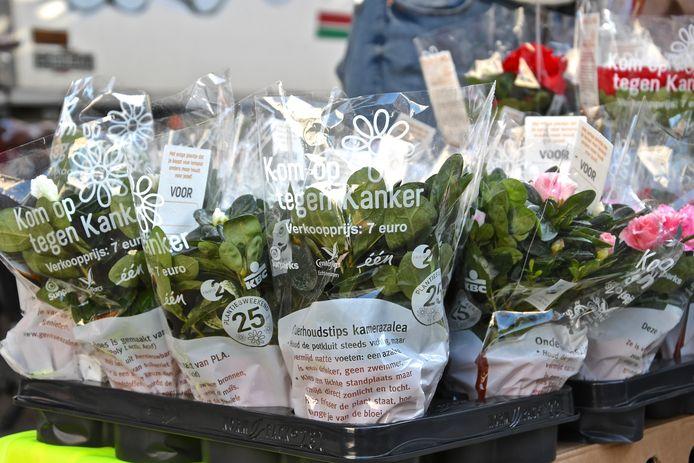De opbrengst van de plantenverkoop gaat naar verschillende steun- en zorgprojecten voor kankerpatiënten.