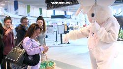 Man vraagt vrouw na 20 jaar opnieuw ten huwelijk in konijnenpak
