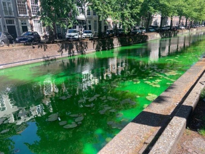 Het groene water langs de Nieuwe Uitleg.