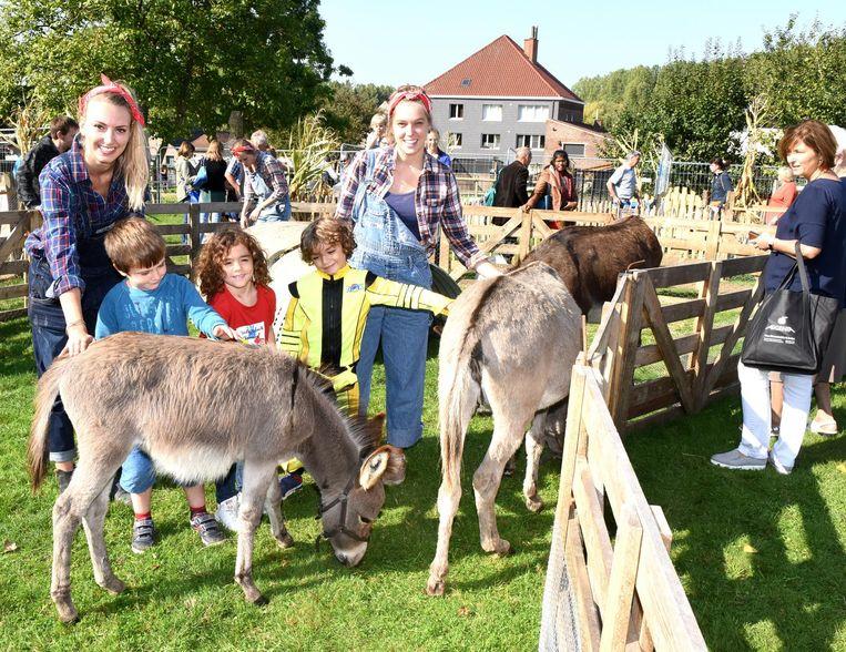 Enkele kinderen maken kennis met de ezeltjes van de kinderboerderij.