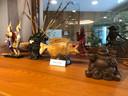 Overal in het Wereldhuis in Boxtel is te zien dat dat een multicultureel zorgcentrum is.