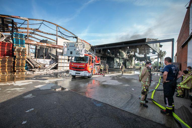 """""""Volgens de eerste berichten van de brandweer waren er dertig seizoensarbeiders aanwezig"""", zegt de Truiense burgemeester Veerle Heeren (CD&V)."""