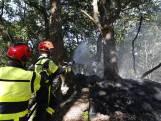 Brandweer voorkomt grote bosbrand Oosterhout dankzij oplettende mountainbiker