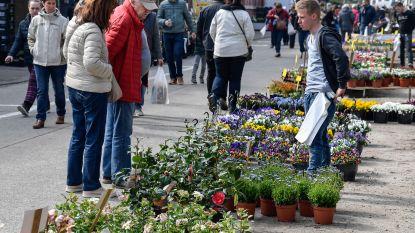 Vijf tips voor dit weekend: plantenmarkt, turngala en lenteschoonmaak