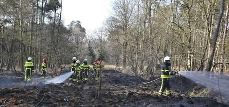 Brandweer blust bosbrand in Moergestel