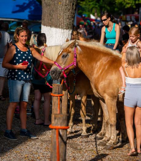 Avondprogramma Alblasserdamse paardenmarkt verplaatst naar volgende maand
