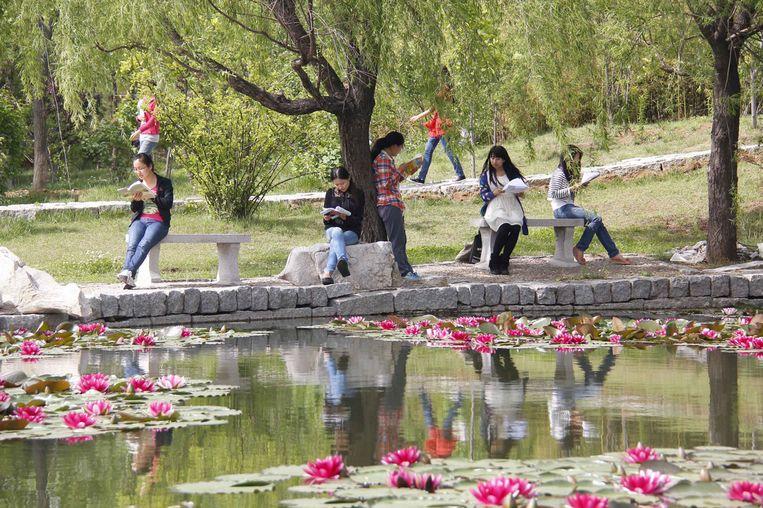 Chinese studenten kunnen van waarde zijn voor de universiteit. Beeld RV