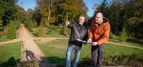 Koningsberg in Rozendaal krijgt een stalen boom