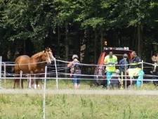 Vrouw gewond aan been door val van paard in Loon op Zand