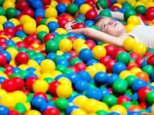 Ballorig mikt in Etten-Leur op speelparadijs aan de Grauwe Polder