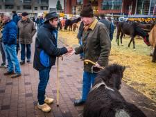 Dit was, na 657 jaar, de allerlaatste traditionele paardenmarkt in Goor
