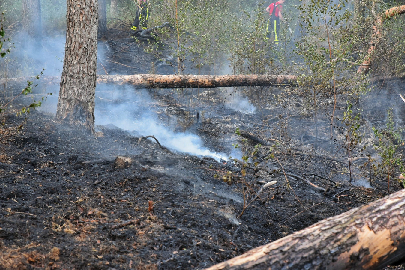 Bosbrand in Moergestel.