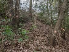 Plan voor landgoed van vijftien hectare in Moergestel