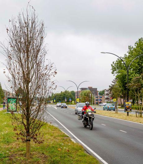 Nieuw asfalt voor Laan 1940-1945 in Maassluis