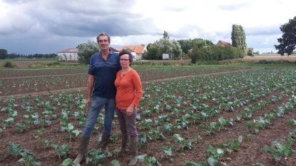 Colruyt koopt bio-boerderij