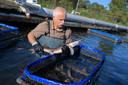 In de kooien op zee moeten de zalmen groeien, tot ze 4 tot 6 kilogram wegen en slachtrijp zijn
