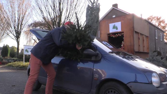 De kerstbomen drive-through in Mariënvelde.
