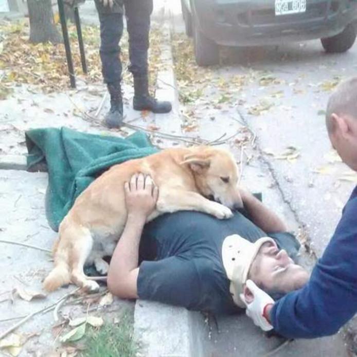 Hond Tony is zichtbaar bezorgd om het welzijn van zijn baas Jesus Hueche.