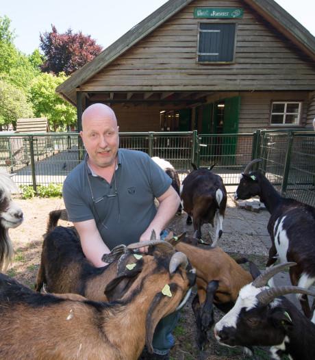 Buurtboerderij Ramshorst in Zwolle moet stoppen: wie heeft er plek voor een van de geiten, kippen en pony's?