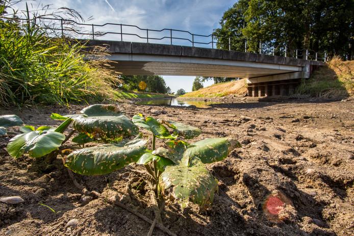 De schipbeek tussen Gelselaar en Diepenheim is door de aanhoudende warmte droog komen te liggen, waterplanten en troep op de bodem worden zichtbaar