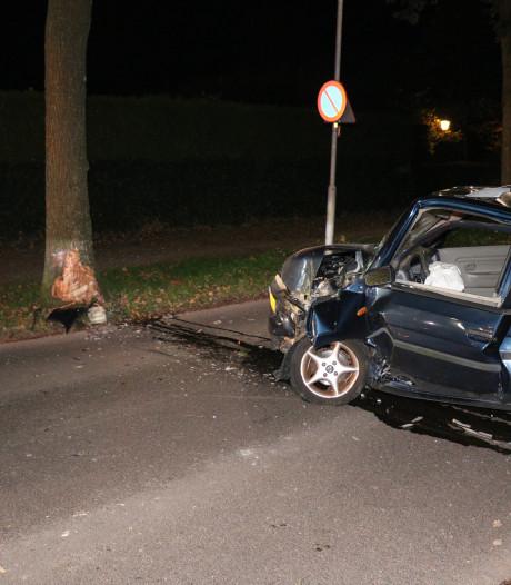 Beschonken automobilist raakt boom, passagier gewond