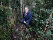 Harrie Cleven uit Valkenswaard wist niet wat hij zag toen hij thuiskwam: boom in achtertuin foetsie