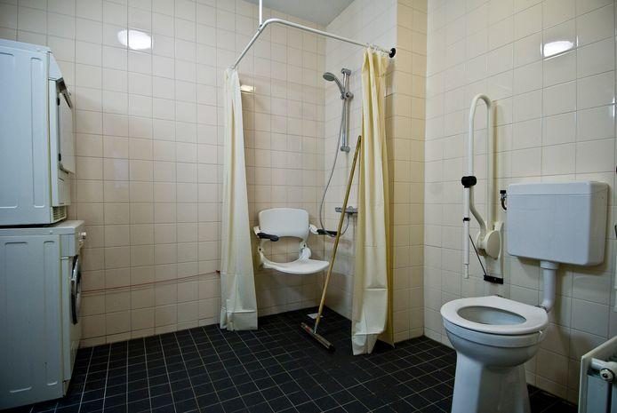 Een badkamer met aangepaste douche en toilet.