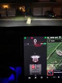 De technologie in een Tesla ziet een hond aan voor een voetganger.