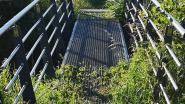 """N-VA Zoutleeuw: """"Maak dit brugje a.u.b. hondvriendelijk"""""""