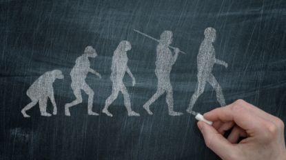 Neanderthalers liepen net als wij rechtop