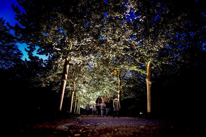 Het lichtkunstfestival Life Halderberge is verplaatst van de bossen bij Hoeven naar het Arboretum van Oudenbosch.