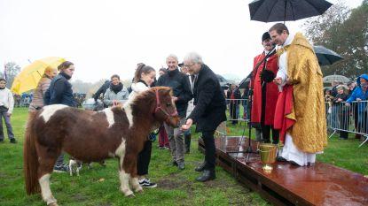 Brasschaat viert Sint-Hubertus met dierenwijding
