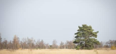 CDA worstelt met Natura 2000 en met zichzelf
