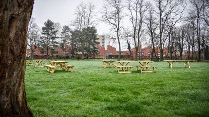 Plannen klaar voor speelplein 't Kruis: boomstammenparcours, nieuwe speeltuigen en meer bloemen