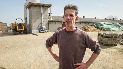Na 'Babylonische vliegenplaag' krijgt Chris Dusauchoit volgend jaar... een brandnetelplaag