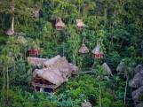 Un incroyable village de cabanes dans les arbres