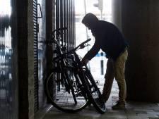 Roep om ingebouwde chip voor e-bikes in strijd tegen diefstal: 'Het is een kat-en-muis-spel'