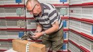 15.000 duiven gelost ter ere van postduiven uit WO I