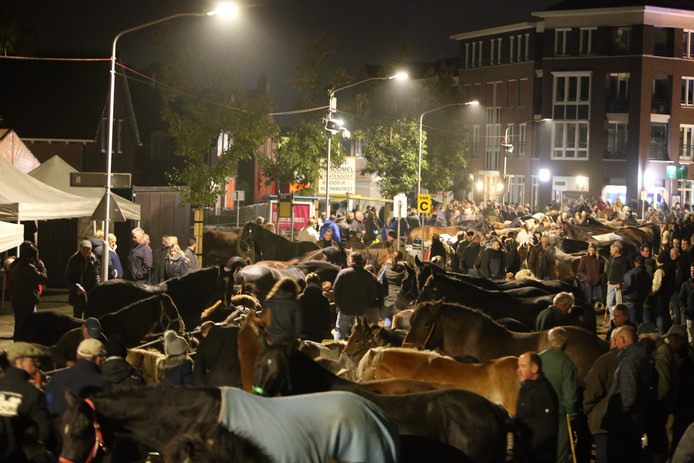 De paardenmarkt in Hedel is al in volle gang.