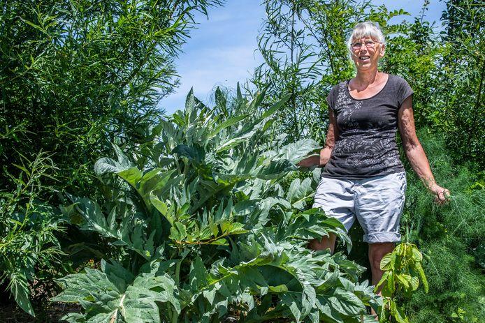 Wobby Langelaar met een Kardoen in haar voedselbos.