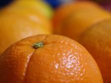 Spaanse politie houdt dieven met auto's vol sinaasappels aan