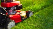 Met deze tools maak je je tuin weer lentefris