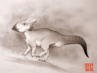 Wetenschappers ontdekken zeldzaam dinosaurusfossiel van 'verloren continent'