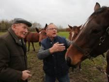 Na duizenden paarden taxeren stopt Gait (89) uit Heerde er mee