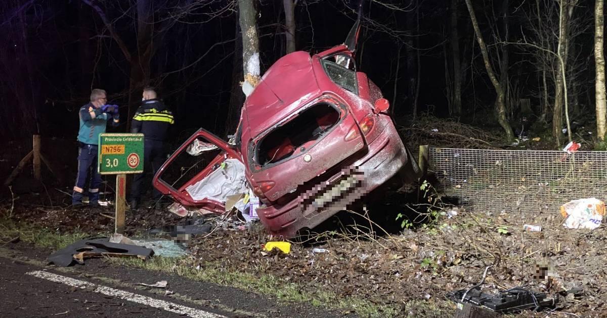 Leuvenumseweg bij Ermelo afgesloten na ernstig ongeval.