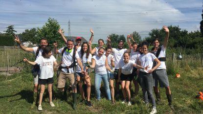 Medewerkers van L'Oreal voeren klussen uit op leefboerderij Casa di Mauro