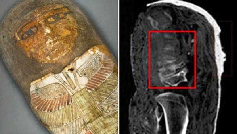 Twee van de mummies in de Vaticaanse Musea blijken nep Beeld Vaticaanse Musea
