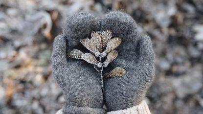 Gedaan met mooie nazomer: komende week gevoelig kouder, met kans op sneeuw in Ardennen