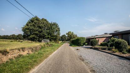 """Minister Demir geeft geen vergunning voor bouw nieuw pluimveebedrijf in Wijchmaal: """"Op een andere locatie misschien wel, maar hier niet"""""""